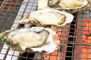 gen8_oyster01